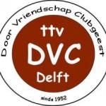LogoDVCdef240